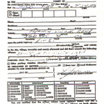 Michigan Uniform Law Citation